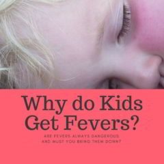 High Temperature in Children: Does it Have a Purpose? What Makes a Fever Successful?