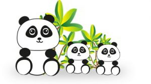 PANDAS and Strep A Infection