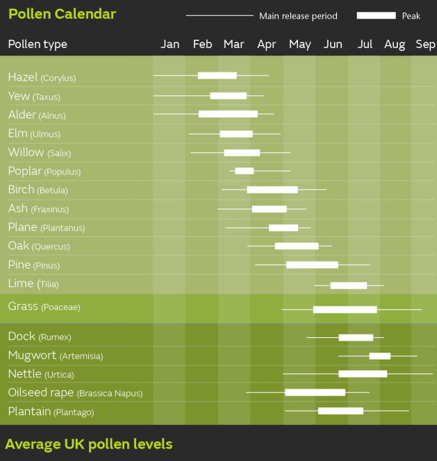 Pollen Sources by Month